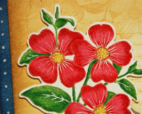 Coloring Flowers With Colored Pencils by Wednesday S Card Colored Pencil Flowers