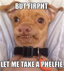 Phteven'a phelfie | Funny Pictures and Quotes