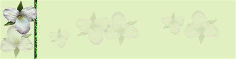 forside-blomster