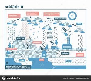 Diagram Acid Rain Pictures
