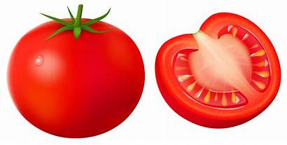 Tomato Clipart Clip Transparent Vegetables Tomatoes Tomate