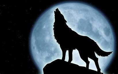 Howling Wolf Wallpapers Imagescicom Animals Wallpapersafari