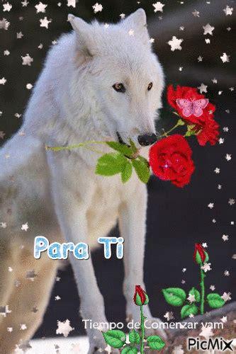wolf picmix