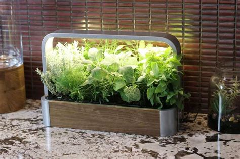 shark tank products 苴dn smart automated indoor gardens