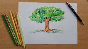 Tutorial - How to Draw a Tree and Color It using Pencil ...