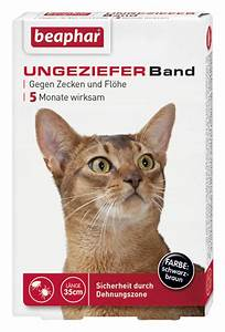 Flöhe Bei Katzen Bekämpfen : zoogut ungezieferband gegen zecken und fl he bei katzen online kaufen ~ Orissabook.com Haus und Dekorationen