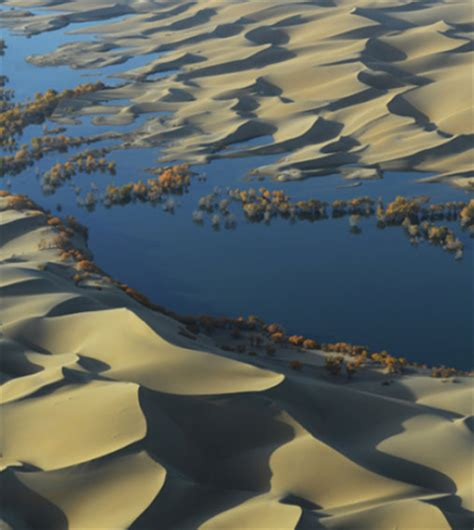 missing carbon sink found in desert aquifers
