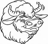 Buffalo Coloring Face Drawing Bison Animals Clipartmag sketch template