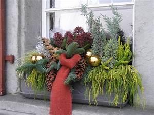 Advent Deko Für Draußen : advent pflanzen deco basteln au endeko weihnachten weinachtsdeko draussen und fensterdeko ~ Orissabook.com Haus und Dekorationen