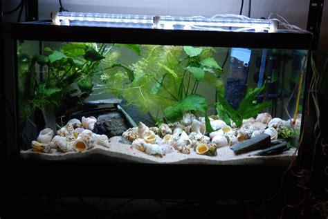 aquarium 500l pas cher eclairage aux leds simple et pas cher partie 2 modification de la galerie d un 54 litres tanganyika