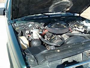 16secride 1993 Chevrolet S10 Regular Cab Specs  Photos  Modification Info At Cardomain