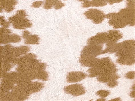 Cowhide Print Fabric by Suede Cow Print Mocha Fabric 54 Quot Wide Sold By The Yard