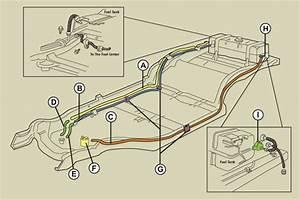 Fuel And Vent Lines  - Corvetteforum