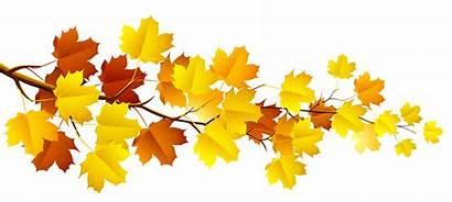 Autumn Fall Leaves Clipart Transparent Pluspng
