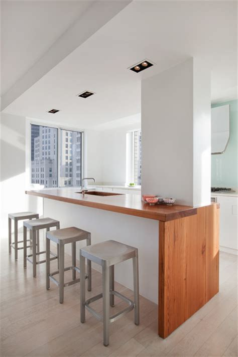 madison square apartment modern kitchen  york