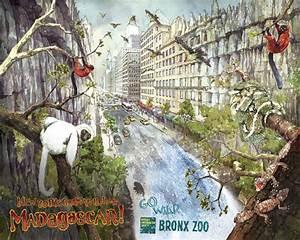 Bronx Zoo - Madagascar