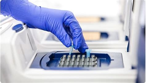 polymerase chain reaction pcr types   science
