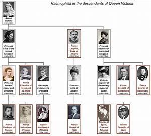 Haemophilia In European Royalty Wikipedia