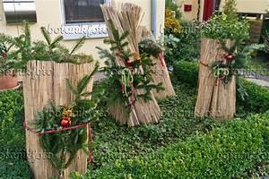 Pflanzen Für Den Vorgarten : bild pflanzen mit winterschutz in einem vorgarten 527037 ~ Michelbontemps.com Haus und Dekorationen