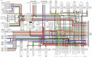 Wiring Diagram Harley Davidson Softail