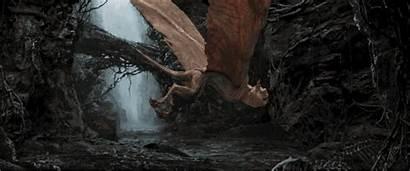 Kong Orlando Skull Island Universal Reign Creatures