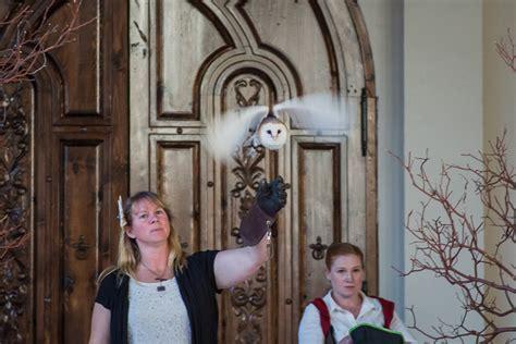 hogwarts   life  stunning harry potter wedding