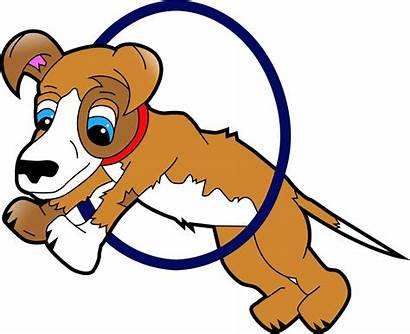 Dog Hoop Clipart Through Jump Dogs Things