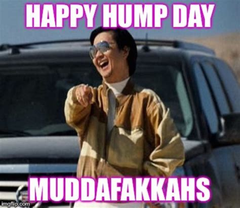 Wednesday Hump Day Meme - laughable wednesday hump day meme picture wishmeme