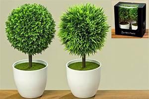 Buchsbaum Im Topf : buchsbaum im topf 2er set k nstlich zimmerpflanze kunstblumen 2 st ck buchskugel buchsbaumkugel rund ~ A.2002-acura-tl-radio.info Haus und Dekorationen