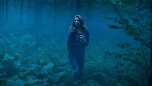 8 of the Scariest Horror Movie Forests! - Bloody Disgusting