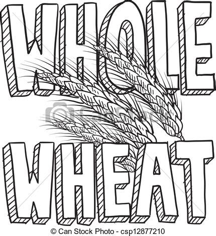 wheat food sketch doodle style  wheat cereal