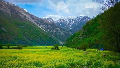 Meadow Mountains Flowers Nature Mountain 4k Iran