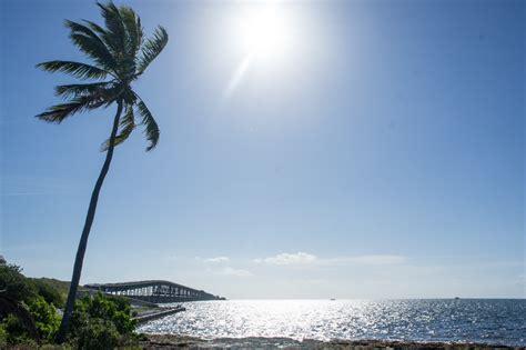 chambre de bonnes exil tropical dans les au sud de la floride le
