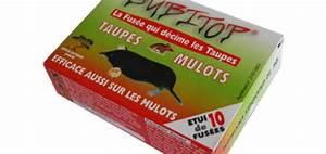 Produit Anti Taupe : fumigene anti taupe efficace taupier sur la france ~ Premium-room.com Idées de Décoration