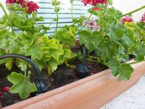 Arrosage Goutte à Goutte Professionnel : quel syst me d 39 arrosage pour mon jardin ~ Dailycaller-alerts.com Idées de Décoration
