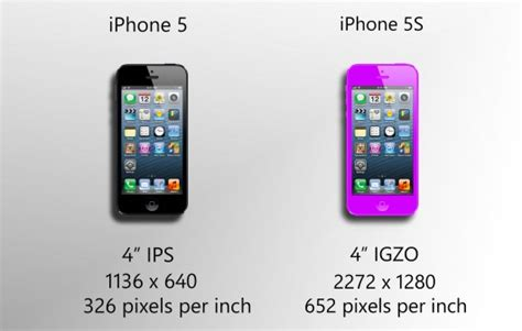 iphone 5 s colors will a colorful iphone 5s arrive in june