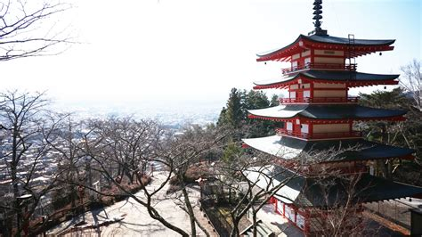 images tree nature tower measure japan temple