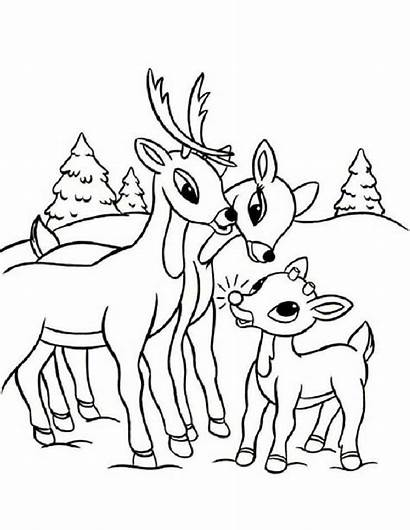 Coloring Rudolph Pages Reindeer Url Read Pencils11