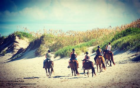 horseback banks outer outerbanks states united rides obx advantage provides kind company its