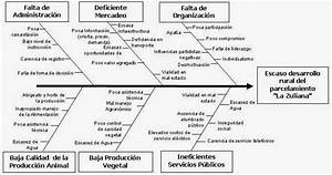 Decisiones  Diagrama De Ishikawa