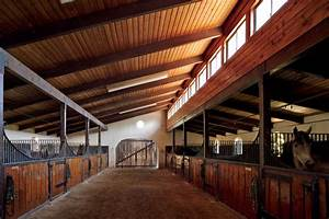 CANOE DESIGN: Equestrian Elegance