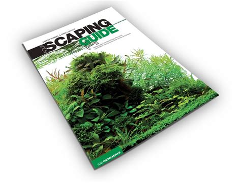 Aquascaping Guide aquascaping guide dennerle
