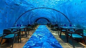5 8 Undersea Restaurant – Maldives underwater restaurant