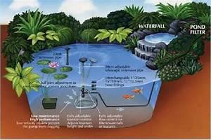 Midipond Pond Diagram