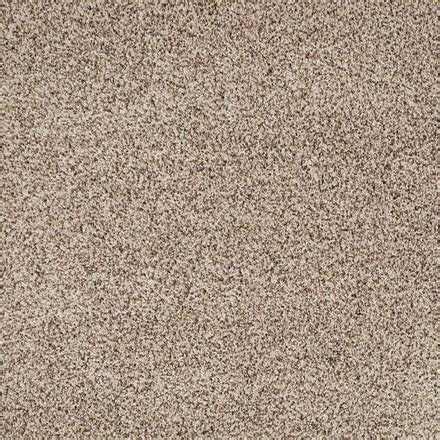 buy angora by shaw texture carpets in dalton