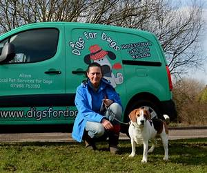 dog walking services in ramsbottom greenmount holcombe With local dog walking services
