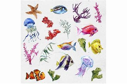 Watercolor Sea Clipart Thehungryjpeg Cart Graphics