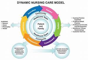 Synergy Nursing Diagram