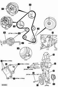 Longueur C3 Picasso : changement courroies c4 1 6 hdi moteur dv6ated4 citro n m canique lectronique forum ~ Medecine-chirurgie-esthetiques.com Avis de Voitures