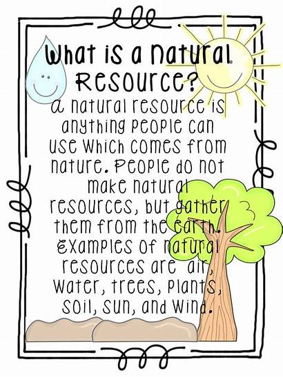 Resources Natural Tree Worksheets Grade Definition Science